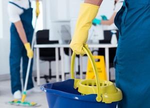 Bio-Dampf Reinigungsservice